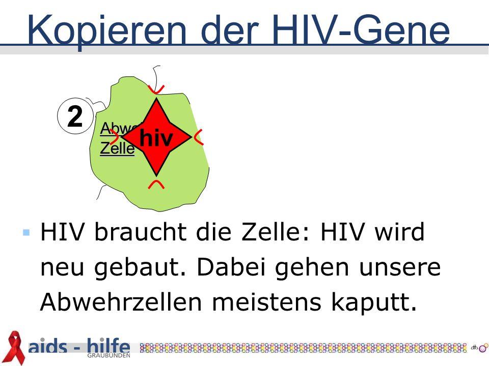 9 AbwehrZelle Kopieren der HIV-Gene hiv 2  HIV braucht die Zelle: HIV wird neu gebaut.