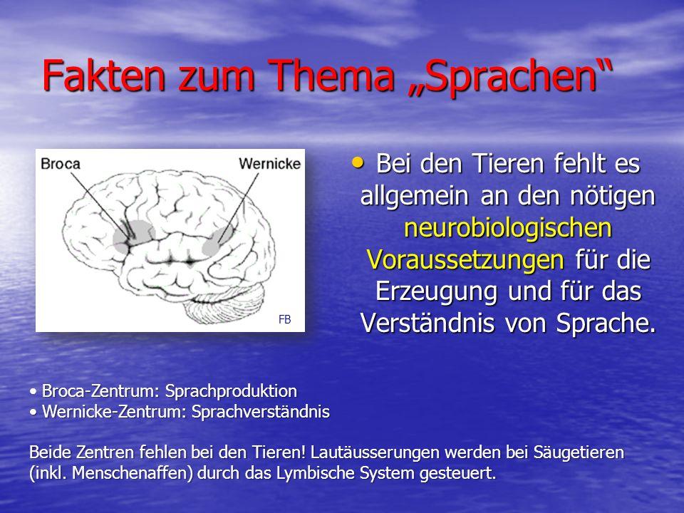 """Fakten zum Thema """"Sprachen Bei den Tieren fehlt es allgemein an den nötigen neurobiologischen Voraussetzungen für die Erzeugung und für das Verständnis von Sprache."""
