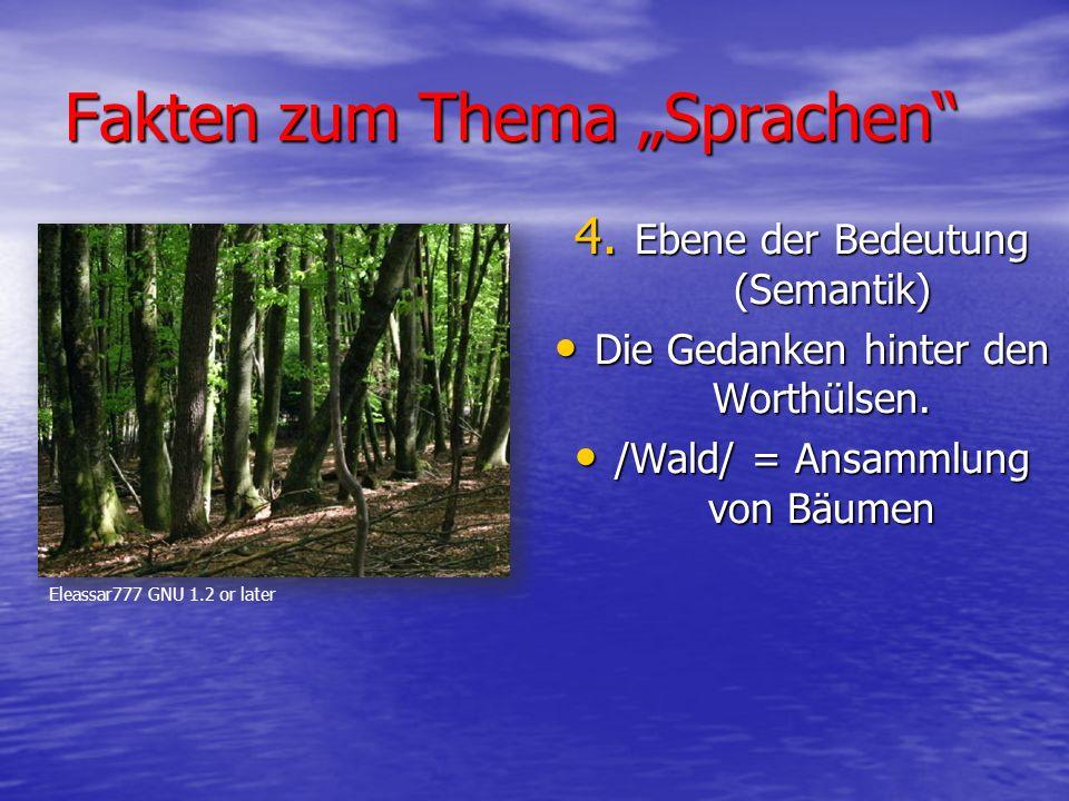 """Fakten zum Thema """"Sprachen 4.Ebene der Bedeutung (Semantik) Die Gedanken hinter den Worthülsen."""