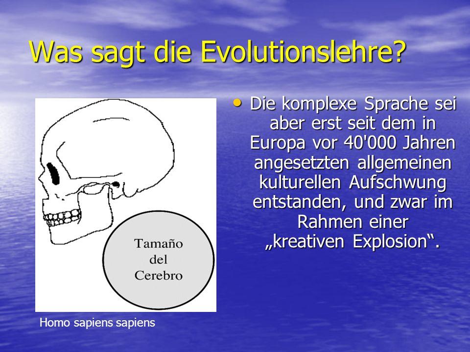 Was sagt die Evolutionslehre.