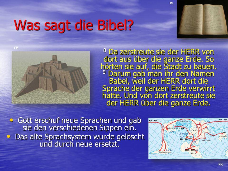 Was sagt die Bibel.Gott erschuf neue Sprachen und gab sie den verschiedenen Sippen ein.