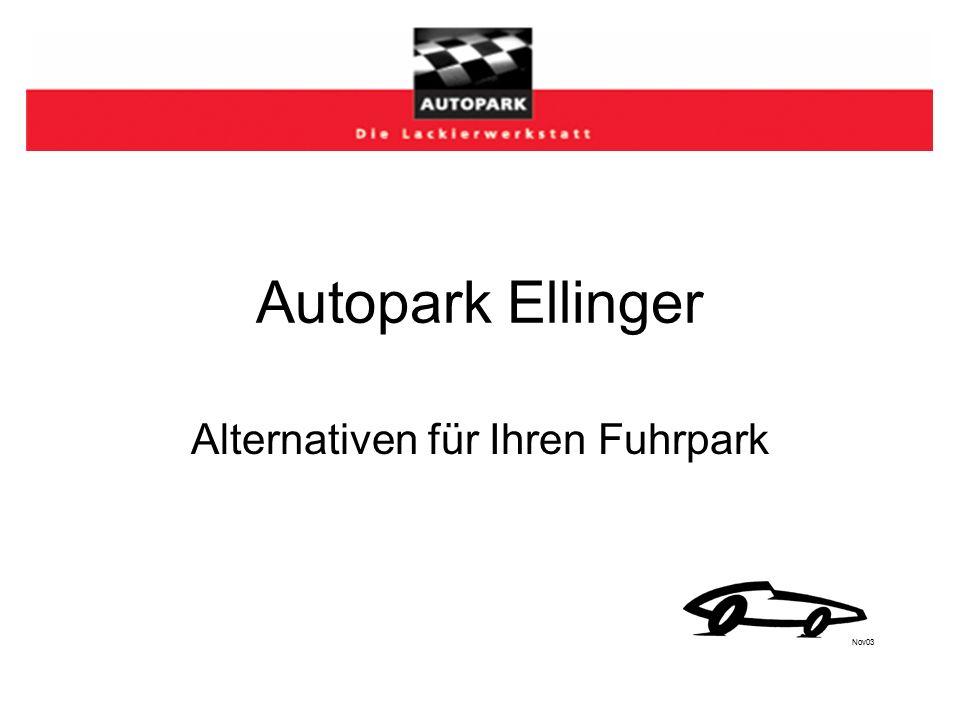 Autopark Ellinger Alternativen für Ihren Fuhrpark Nov03