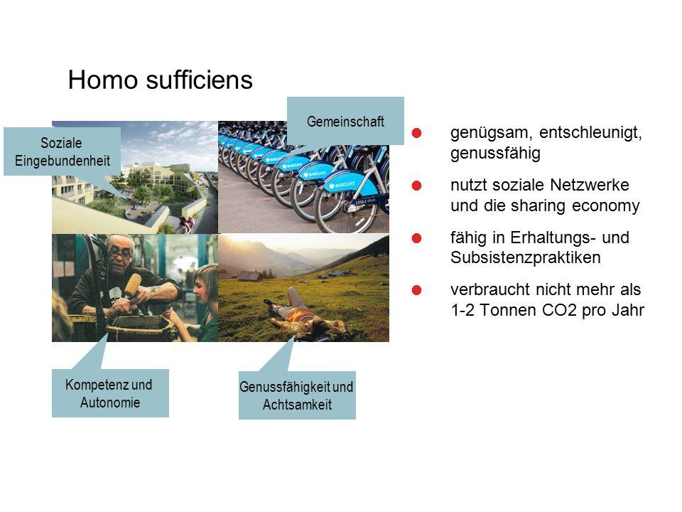 Homo sufficiens  genügsam, entschleunigt, genussfähig  nutzt soziale Netzwerke und die sharing economy  fähig in Erhaltungs- und Subsistenzpraktike