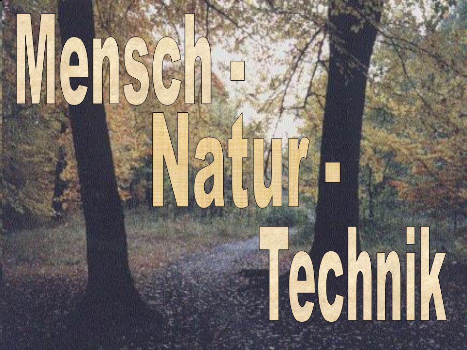 Naturerkenntnisse in......verschiedenen Kulturen
