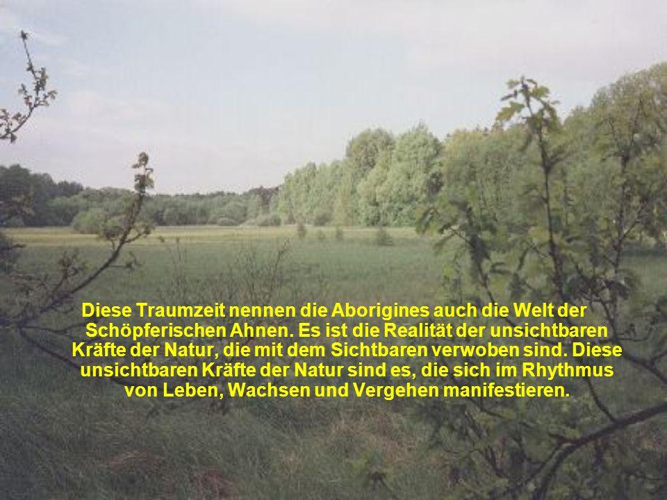 Diese Traumzeit nennen die Aborigines auch die Welt der Schöpferischen Ahnen.