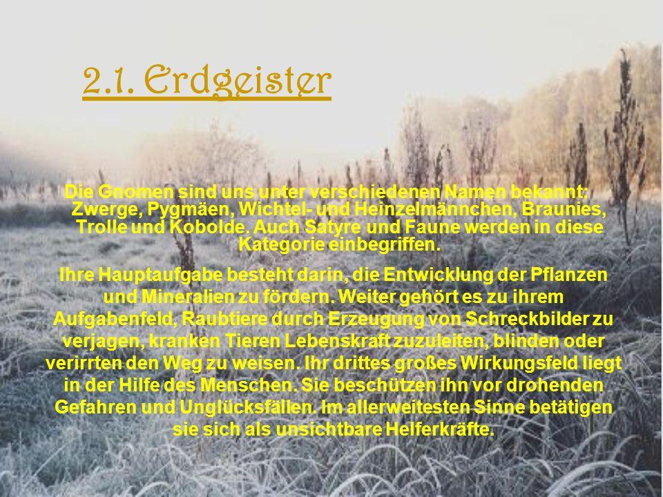 2.1. Erdgeister Die Gnomen sind uns unter verschiedenen Namen bekannt: Zwerge, Pygmäen, Wichtel- und Heinzelmännchen, Braunies, Trolle und Kobolde. Au