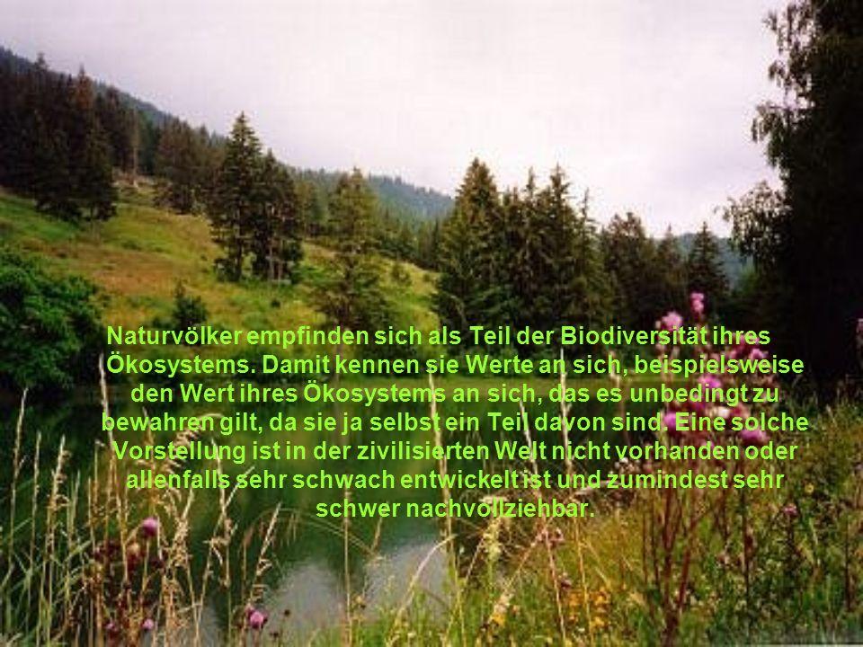 Naturvölker empfinden sich als Teil der Biodiversität ihres Ökosystems.