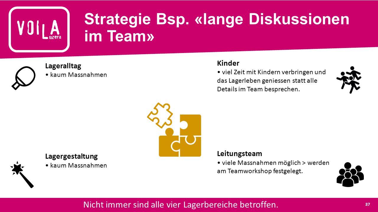 Strategie Bsp. «lange Diskussionen im Team» Nicht immer sind alle vier Lagerbereiche betroffen.