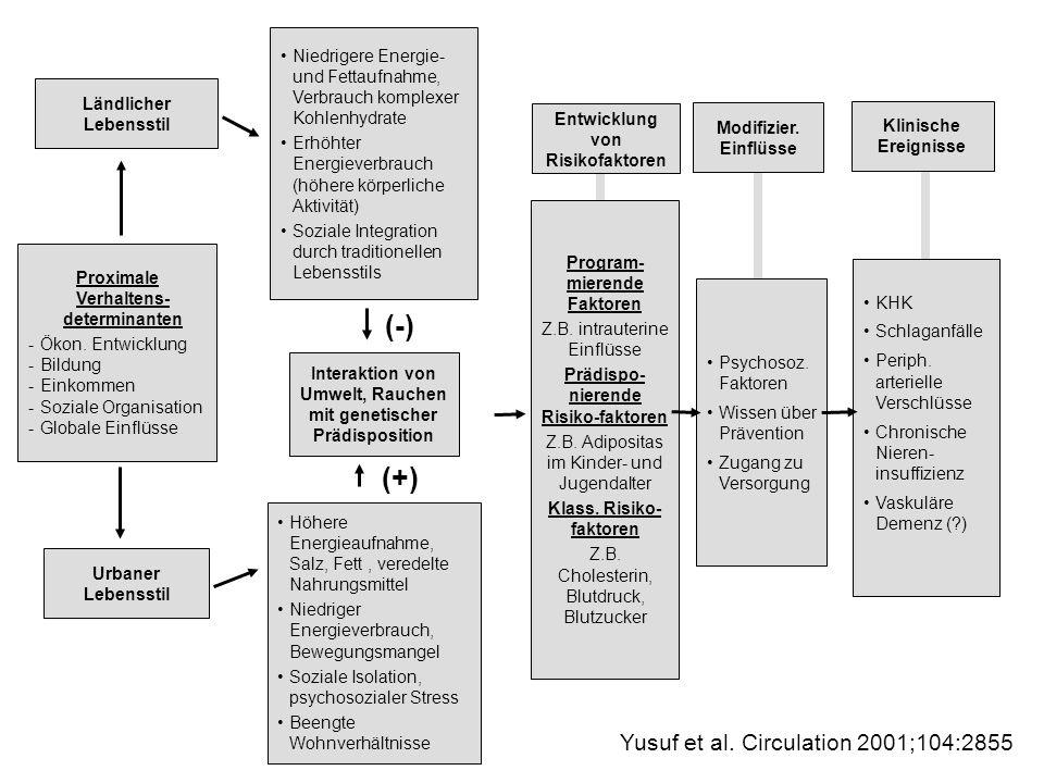 Ländlicher Lebensstil Proximale Verhaltens- determinanten -Ökon. Entwicklung -Bildung -Einkommen -Soziale Organisation -Globale Einflüsse Urbaner Lebe