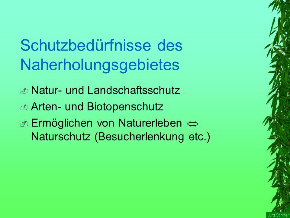 Schutzbedürfnisse des Naherholungsgebietes  Natur- und Landschaftsschutz  Arten- und Biotopenschutz  Ermöglichen von Naturerleben  Naturschutz (Be