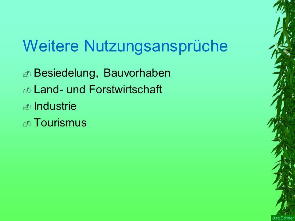 Weitere Nutzungsansprüche  Besiedelung, Bauvorhaben  Land- und Forstwirtschaft  Industrie  Tourismus