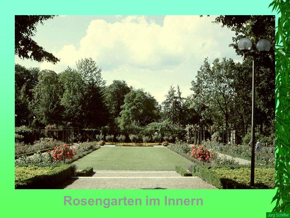 Rosengarten im Innern