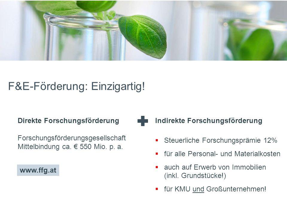 FünfteEbene F&E-Förderung: Einzigartig.