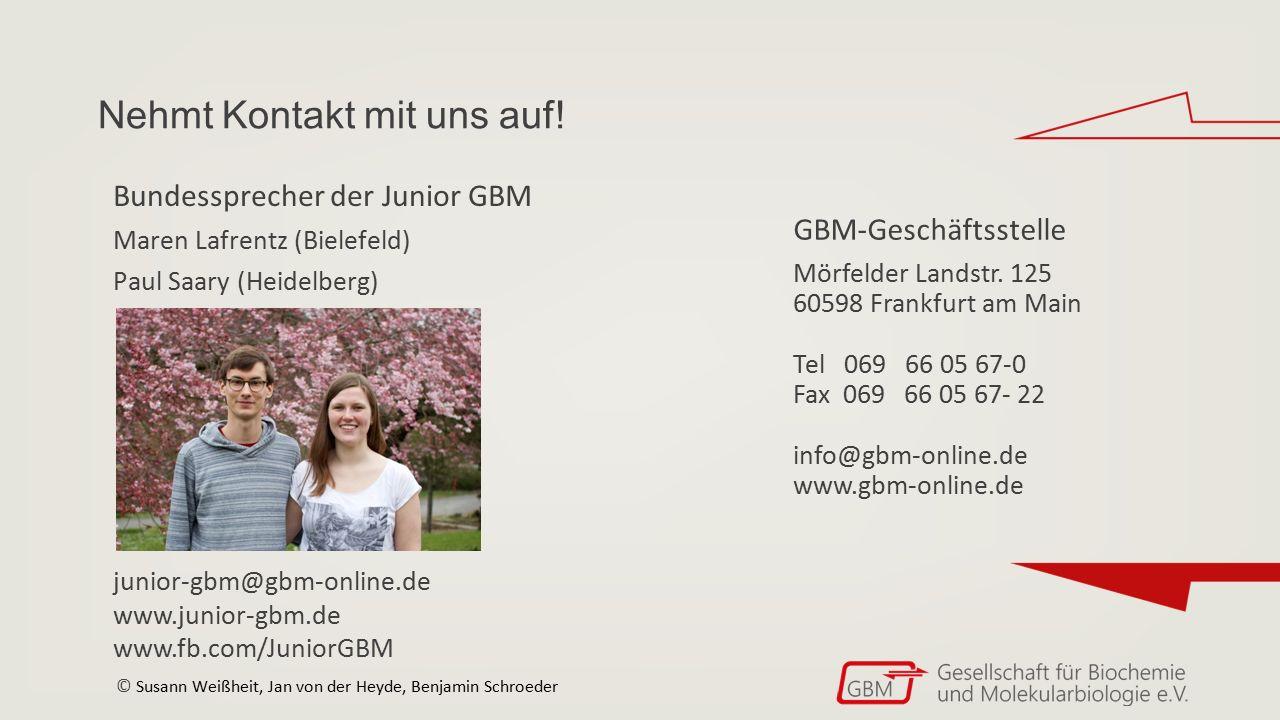 Nehmt Kontakt mit uns auf! GBM-Geschäftsstelle Mörfelder Landstr. 125 60598 Frankfurt am Main Tel 069 66 05 67-0 Fax 069 66 05 67- 22 info@gbm-online.