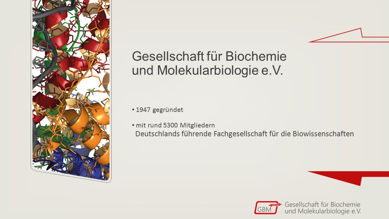 Gesellschaft für Biochemie und Molekularbiologie e.V. 1947 gegründet mit rund 5300 Mitgliedern Deutschlands führende Fachgesellschaft für die Biowisse