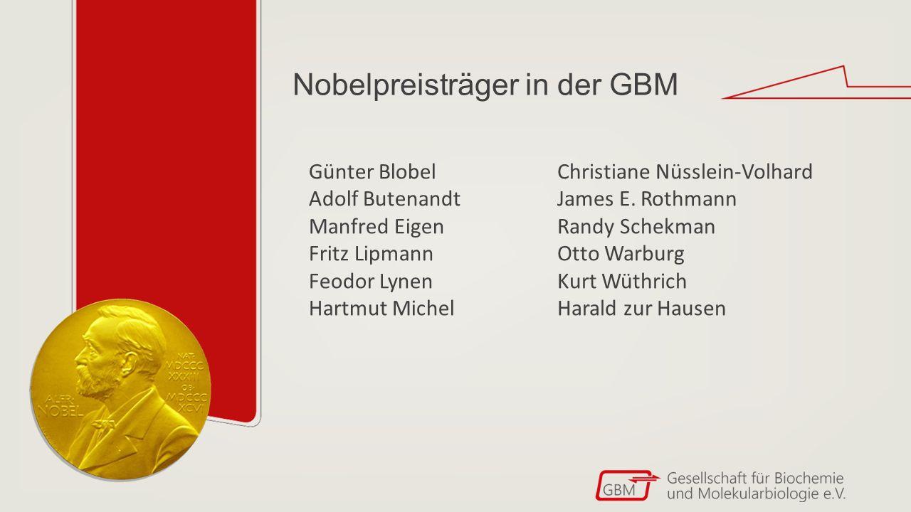 Nehmt Kontakt mit uns auf.GBM-Geschäftsstelle Mörfelder Landstr.