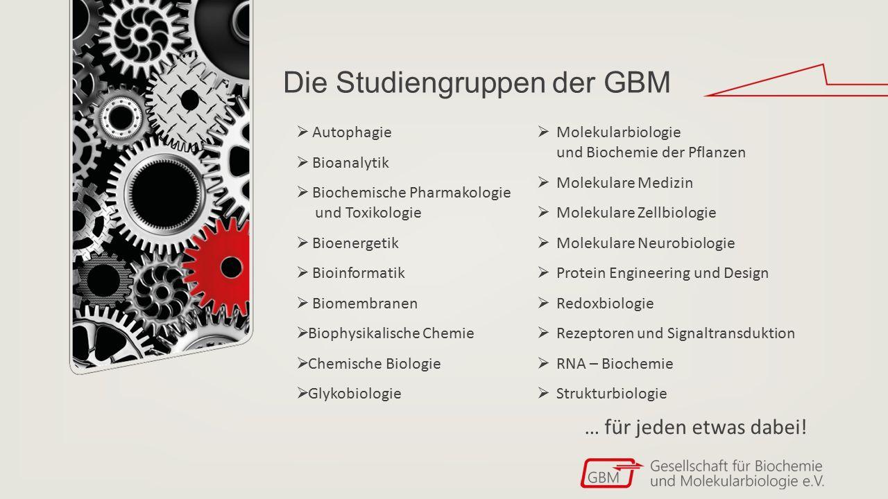 Die Studiengruppen der GBM  Autophagie  Bioanalytik  Biochemische Pharmakologie und Toxikologie  Bioenergetik  Bioinformatik  Biomembranen  Bio
