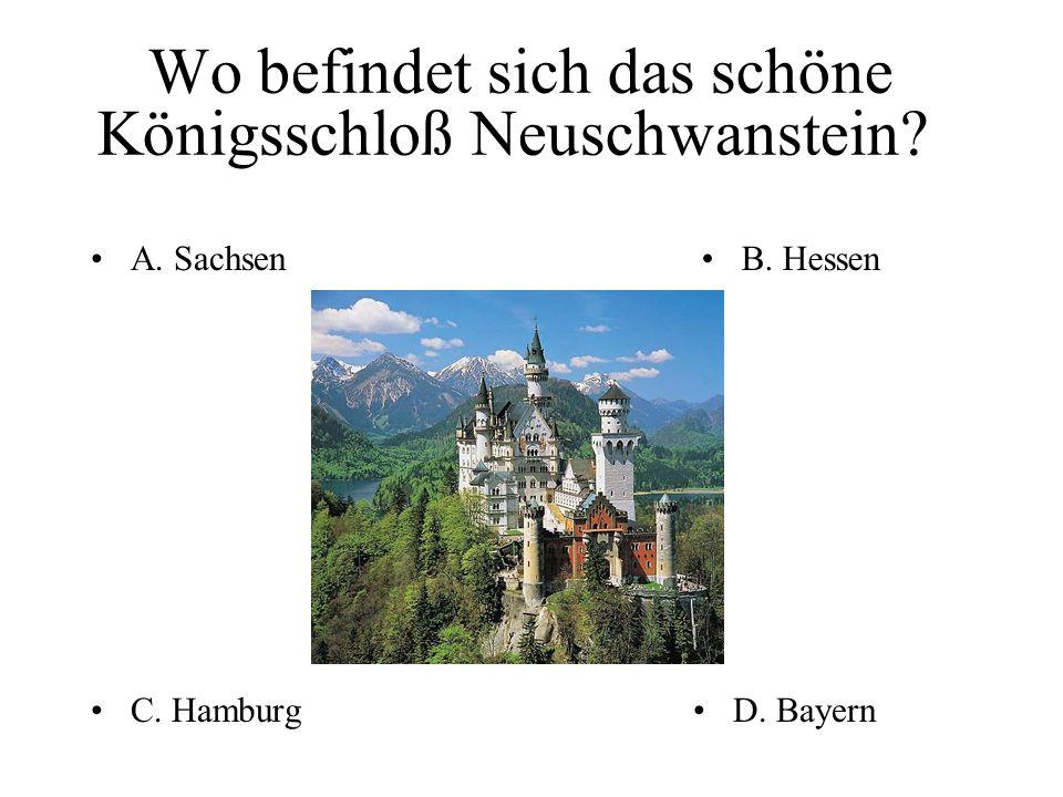 Welche dieser deutschen Firmen produziert Computer? B.B. Siemens