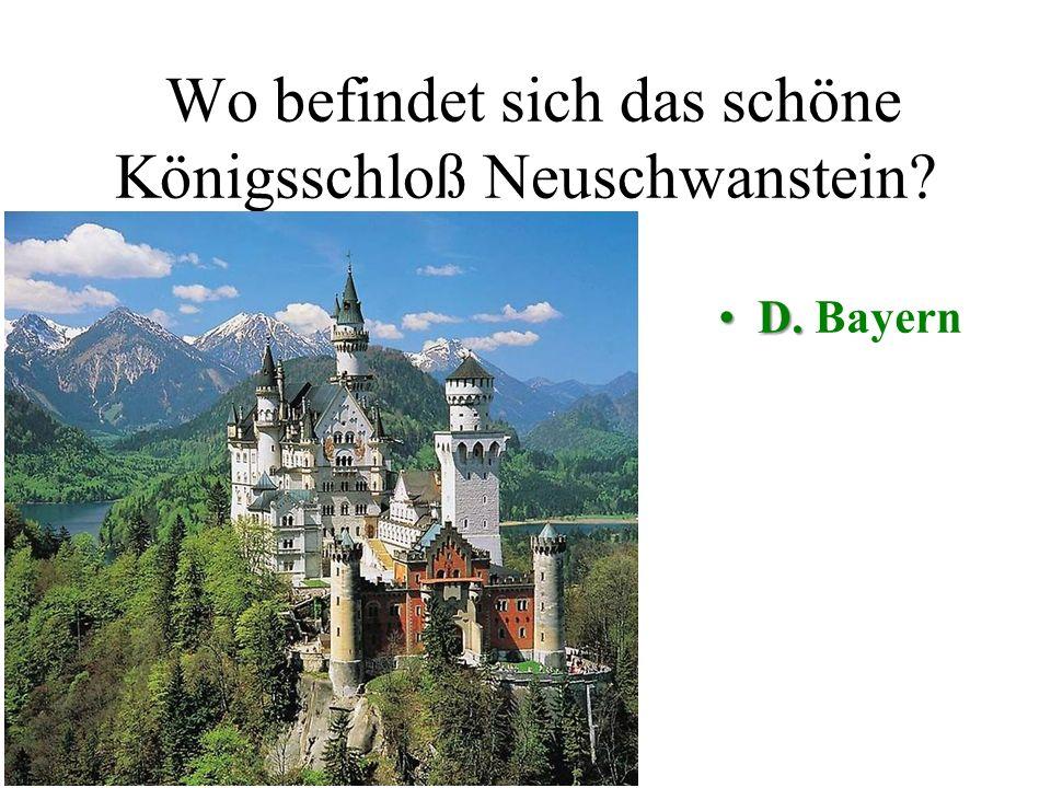 Wo befindet sich das schöne Königsschloß Neuschwanstein? A. SachsenB. Hessen C. HamburgD. Bayern