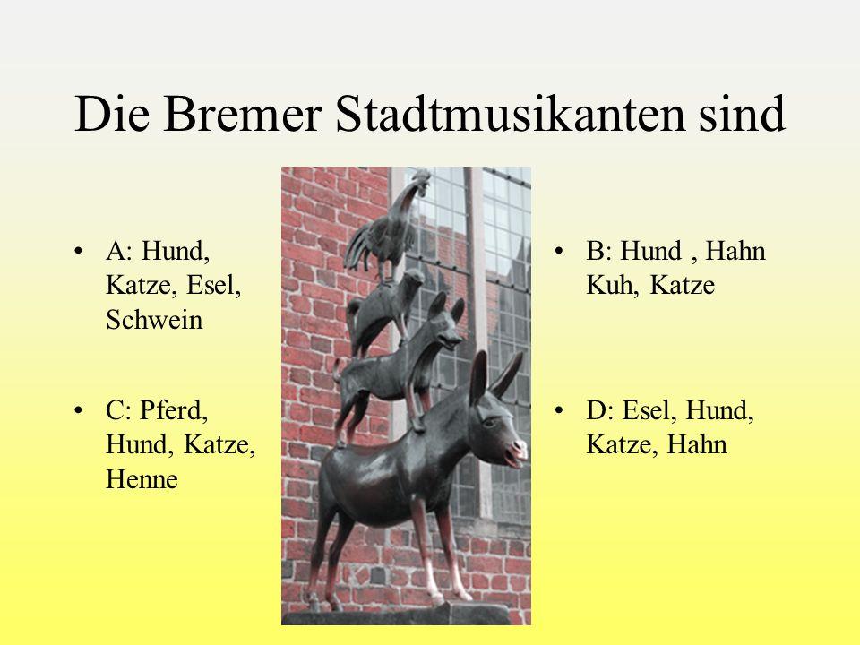 Wo befindet sich das schöne Königsschloß Neuschwanstein D.D. Bayern