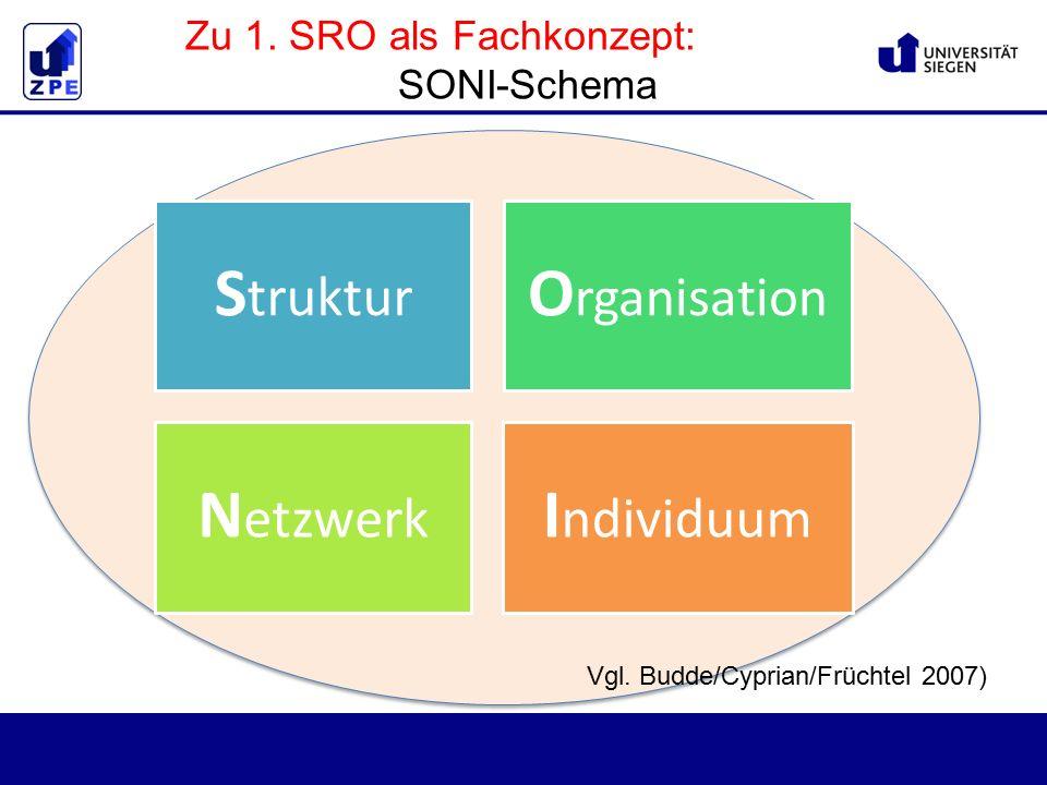 Zu 1. SRO als Fachkonzept: SONI-Schema S truktur O rganisation N etzwerk I ndividuum Vgl.
