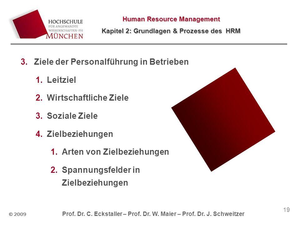 © 2009 Prof. Dr. C. Eckstaller – Prof. Dr. W. Maier – Prof. Dr. J. Schweitzer Human Resource Management Kapitel 2: Grundlagen & Prozesse des HRM 19 3.
