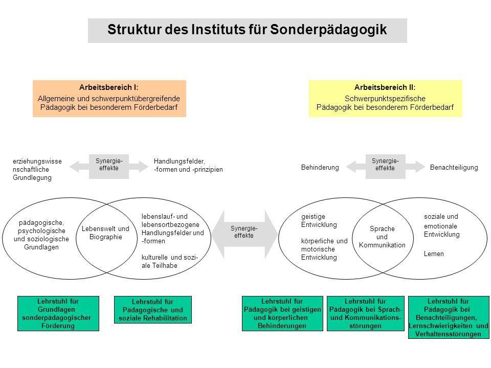 Modul 2:Überblick über sonderpädagogische Förderungsbereiche Modulbeauftragte(r): Jun-Prof.