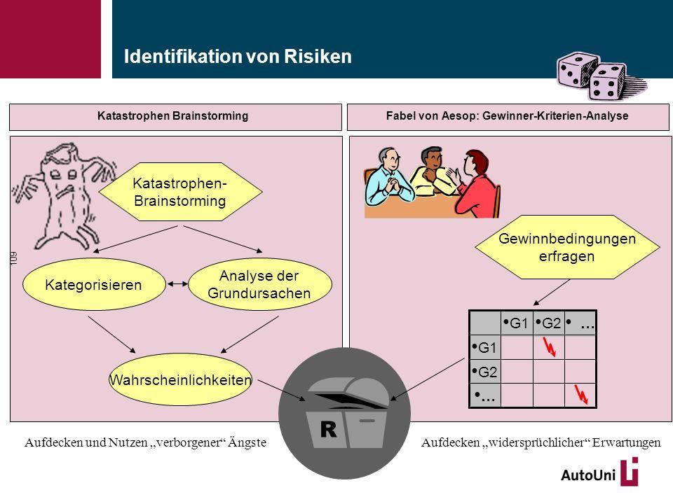 Identifikation von Risiken 109 Katastrophen- Brainstorming Kategorisieren Wahrscheinlichkeiten Analyse der Grundursachen R Gewinnbedingungen erfragen