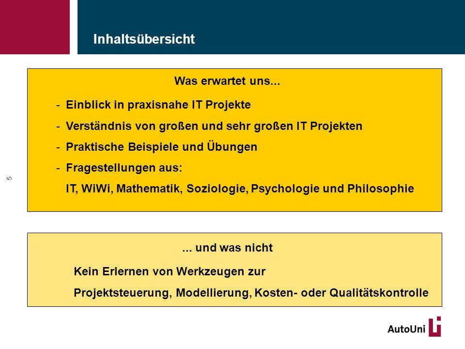 """Analyse der Projekteigenschaften und Risiken: """"Risikomanagement 106 Das-schaffen-wir-Mentalität."""