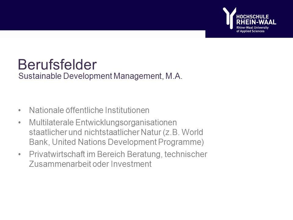 Berufsfelder Nationale öffentliche Institutionen Multilaterale Entwicklungsorganisationen staatlicher und nichtstaatlicher Natur (z.B.
