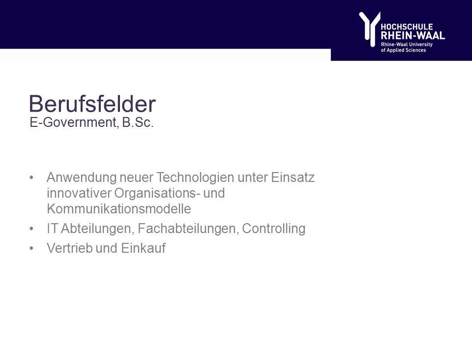 Berufsfelder Anwendung neuer Technologien unter Einsatz innovativer Organisations- und Kommunikationsmodelle IT Abteilungen, Fachabteilungen, Controlling Vertrieb und Einkauf E-Government, B.Sc.