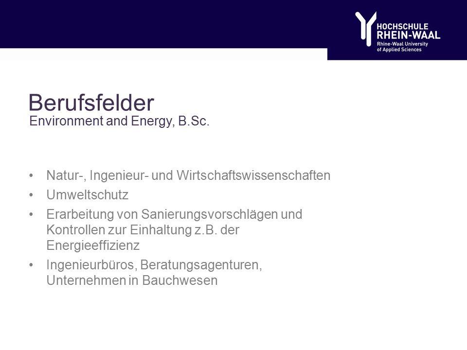 Berufsfelder Natur-, Ingenieur- und Wirtschaftswissenschaften Umweltschutz Erarbeitung von Sanierungsvorschlägen und Kontrollen zur Einhaltung z.B.