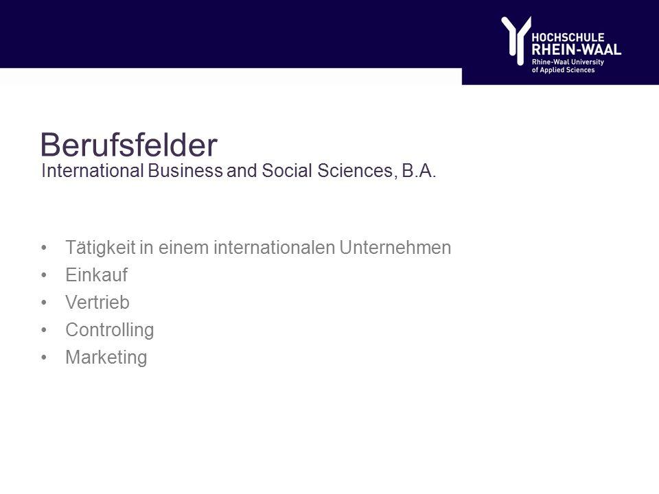 Berufsfelder Tätigkeit in einem internationalen Unternehmen Einkauf Vertrieb Controlling Marketing International Business and Social Sciences, B.A.