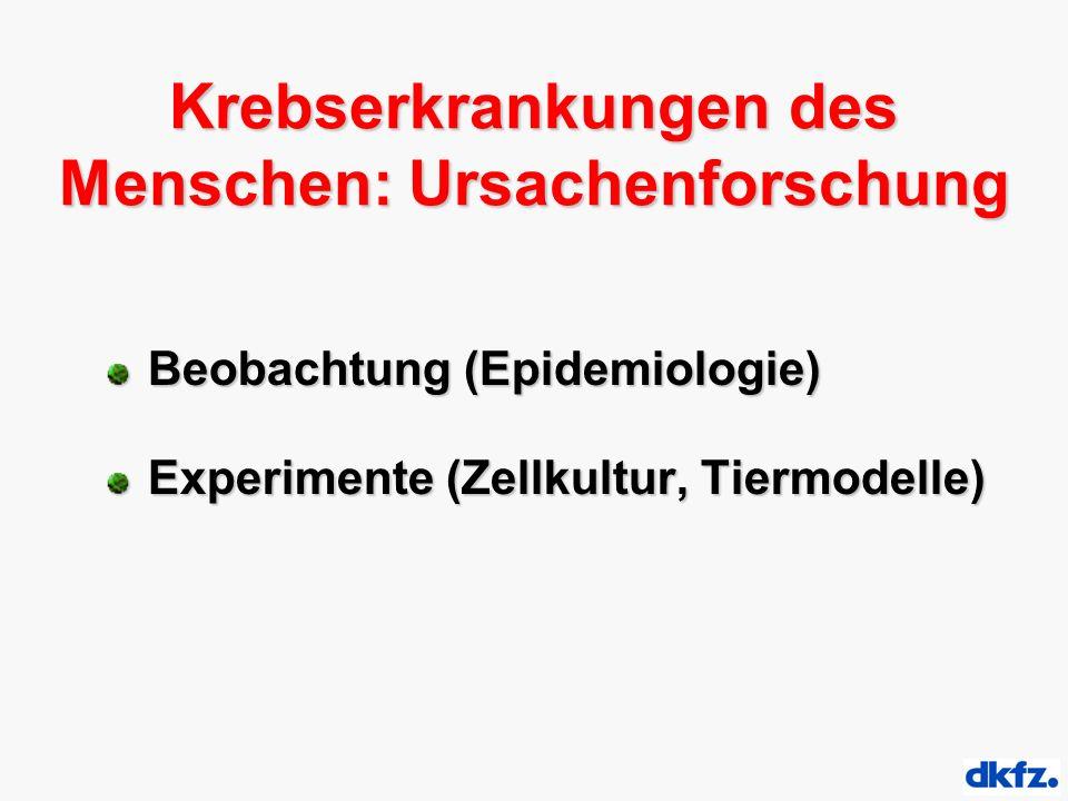Krebserkrankungen des Menschen: Ursachenforschung Beobachtung (Epidemiologie) Experimente (Zellkultur, Tiermodelle)