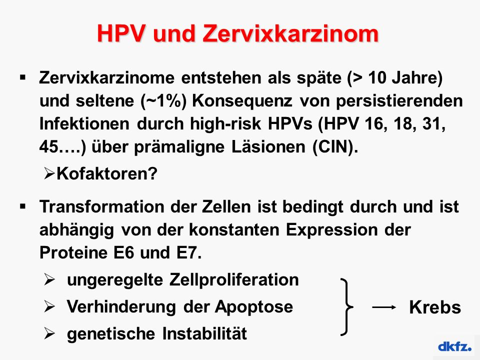 HPV und Zervixkarzinom  Zervixkarzinome entstehen als späte (> 10 Jahre) und seltene (~1%) Konsequenz von persistierenden Infektionen durch high-risk HPVs (HPV 16, 18, 31, 45….) über prämaligne Läsionen (CIN).
