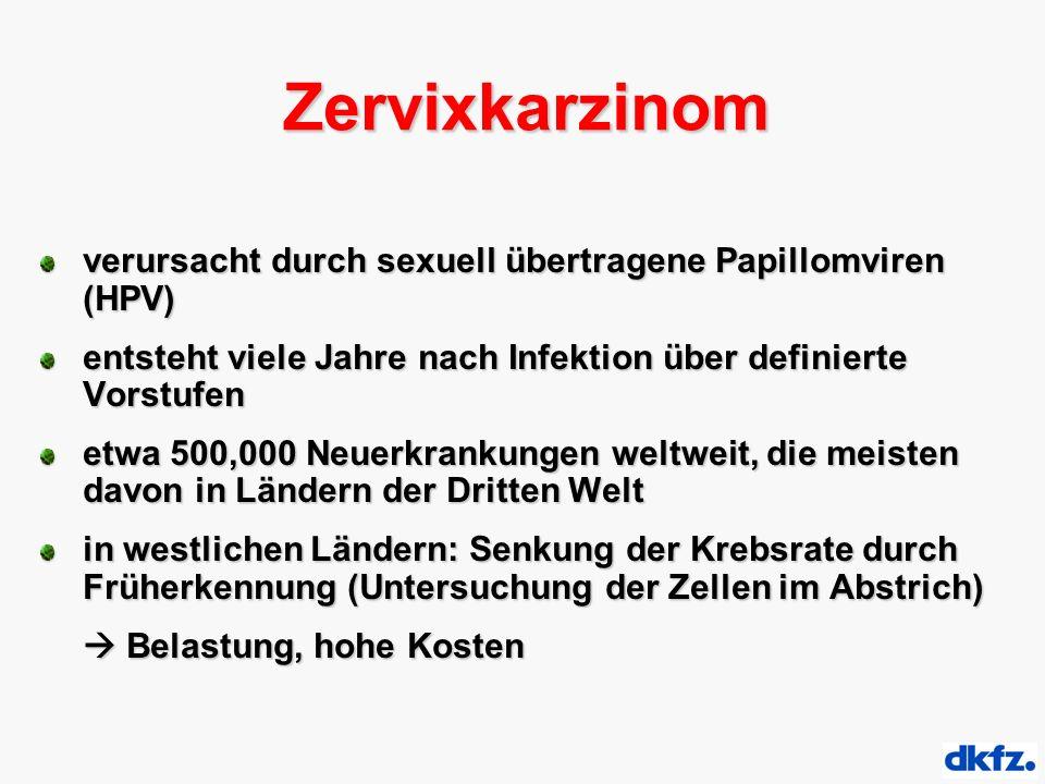 Zervixkarzinom verursacht durch sexuell übertragene Papillomviren (HPV) entsteht viele Jahre nach Infektion über definierte Vorstufen etwa 500,000 Neuerkrankungen weltweit, die meisten davon in Ländern der Dritten Welt in westlichen Ländern: Senkung der Krebsrate durch Früherkennung (Untersuchung der Zellen im Abstrich)  Belastung, hohe Kosten