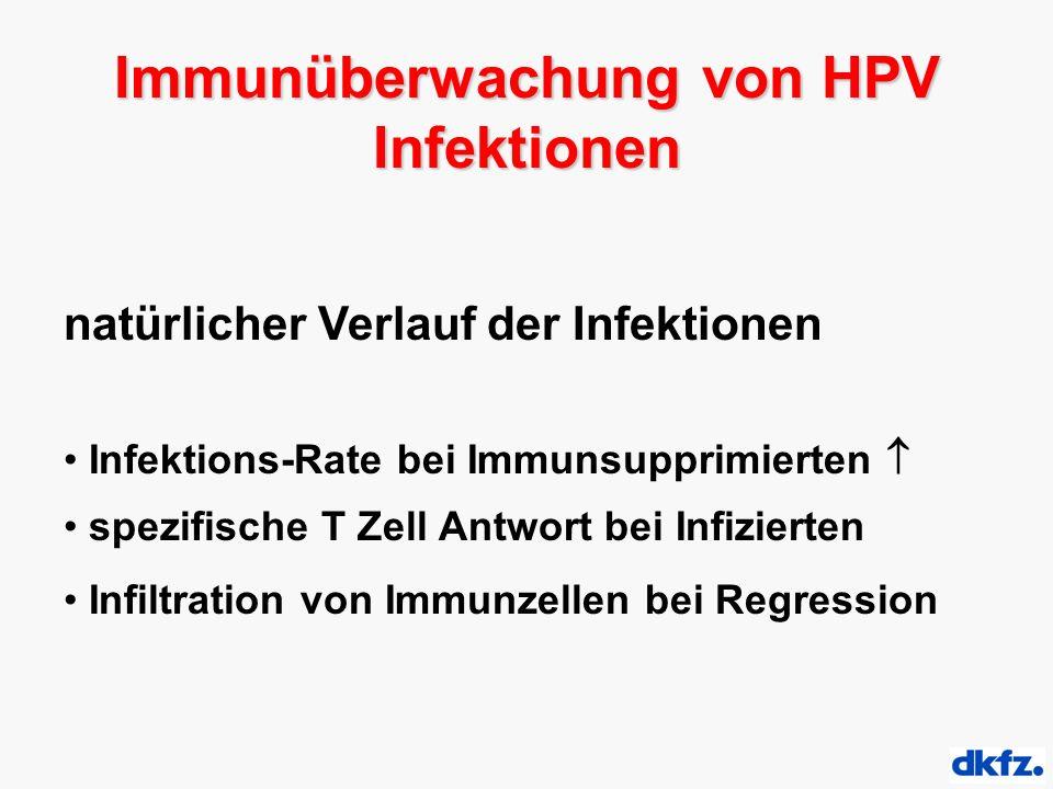natürlicher Verlauf der Infektionen Infektions-Rate bei Immunsupprimierten  spezifische T Zell Antwort bei Infizierten Infiltration von Immunzellen bei Regression Immunüberwachung von HPV Infektionen