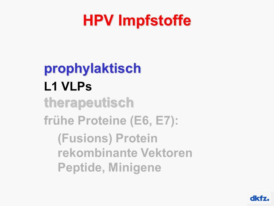 HPV Impfstoffe prophylaktisch L1 VLPstherapeutisch frühe Proteine (E6, E7): (Fusions) Protein rekombinante Vektoren Peptide, Minigene
