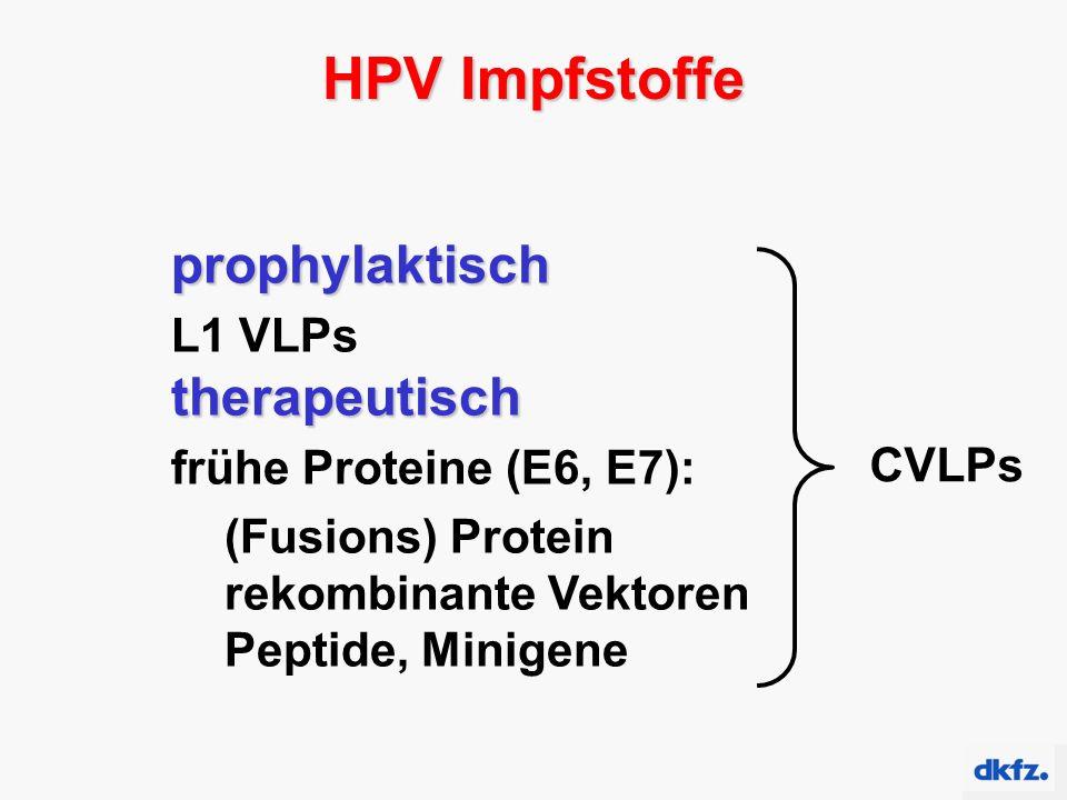 HPV Impfstoffe prophylaktisch L1 VLPstherapeutisch frühe Proteine (E6, E7): (Fusions) Protein rekombinante Vektoren Peptide, Minigene CVLPs