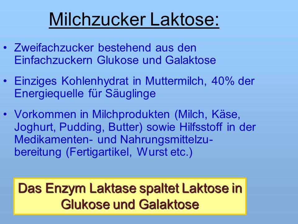 Milchzucker Laktose: Zweifachzucker bestehend aus den Einfachzuckern Glukose und Galaktose Einziges Kohlenhydrat in Muttermilch, 40% der Energiequelle für Säuglinge Vorkommen in Milchprodukten (Milch, Käse, Joghurt, Pudding, Butter) sowie Hilfsstoff in der Medikamenten- und Nahrungsmittelzu- bereitung (Fertigartikel, Wurst etc.) Das Enzym Laktase spaltet Laktose in Glukose und Galaktose