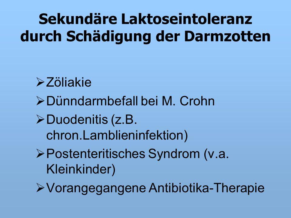 Sekundäre Laktoseintoleranz durch Schädigung der Darmzotten  Zöliakie  Dünndarmbefall bei M.