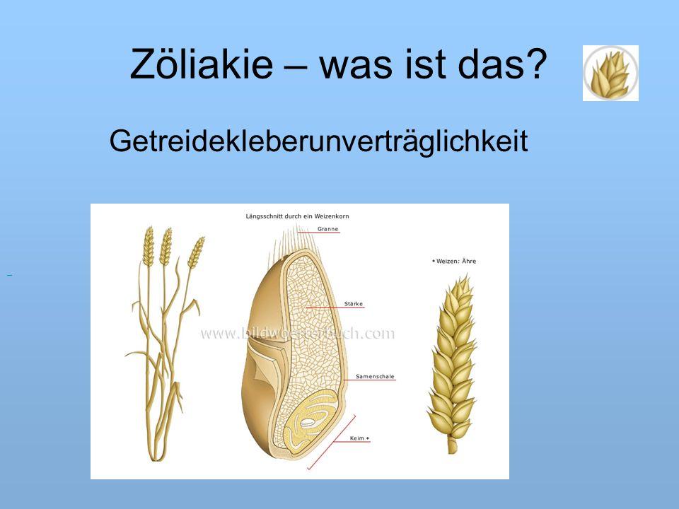 Zöliakie – was ist das? Getreidekleberunverträglichkeit