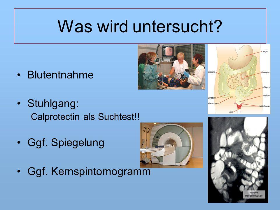 Was wird untersucht. Blutentnahme Stuhlgang: Calprotectin als Suchtest!.