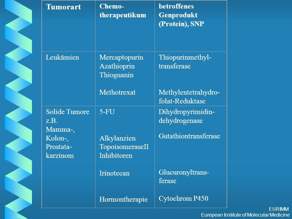 EURIMM European Institute of Molecular Medicine Tumorart Chemo- therapeutikum betroffenes Genprodukt (Protein), SNP LeukämienMercaptopurin Azathioprin Thioguanin Methotrexat Thiopurinmethyl- transferase Methylentetrahydro- folat-Reduktase Solide Tumore z.B.
