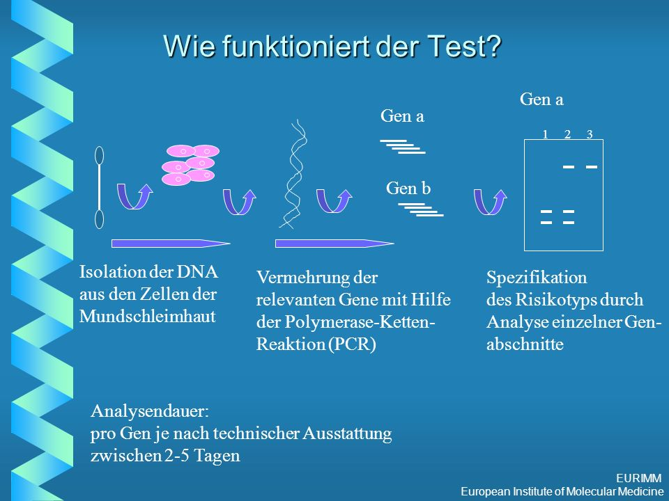 EURIMM European Institute of Molecular Medicine Wie funktioniert der Test.