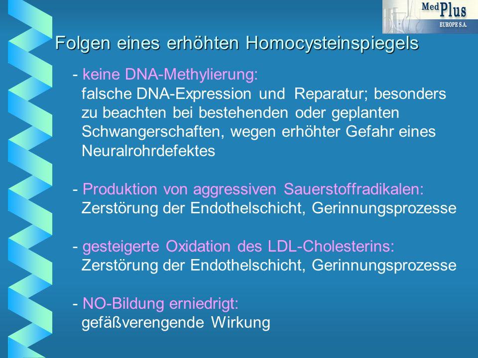 Folgen eines erhöhten Homocysteinspiegels - - keine DNA-Methylierung: falsche DNA-Expression und Reparatur; besonders zu beachten bei bestehenden oder geplanten Schwangerschaften, wegen erhöhter Gefahr eines Neuralrohrdefektes - - Produktion von aggressiven Sauerstoffradikalen: Zerstörung der Endothelschicht, Gerinnungsprozesse - - gesteigerte Oxidation des LDL-Cholesterins: Zerstörung der Endothelschicht, Gerinnungsprozesse - - NO-Bildung erniedrigt: gefäßverengende Wirkung
