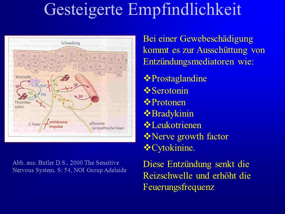 Gesteigerte Empfindlichkeit Bei einer Gewebeschädigung kommt es zur Ausschüttung von Entzündungsmediatoren wie:  Prostaglandine  Serotonin  Protonen  Bradykinin  Leukotrienen  Nerve growth factor  Cytokinine.