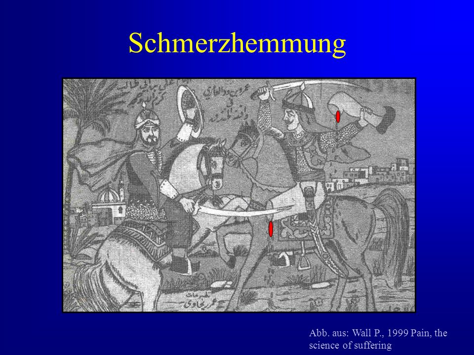 Schmerzhemmung Abb. aus: Wall P., 1999 Pain, the science of suffering