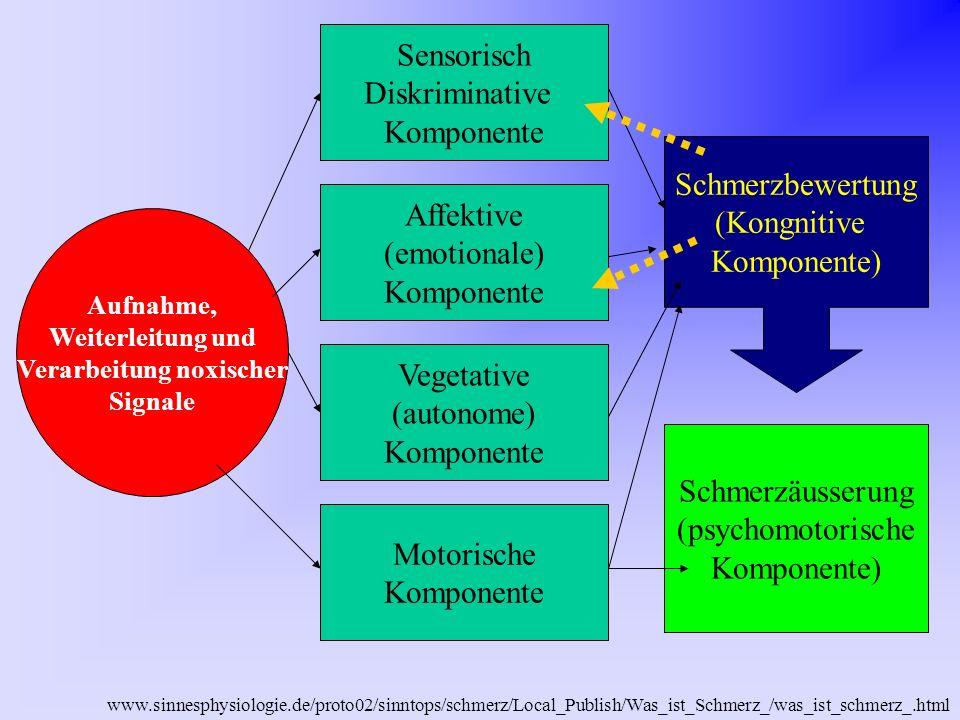 www.sinnesphysiologie.de/proto02/sinntops/schmerz/Local_Publish/Was_ist_Schmerz_/was_ist_schmerz_.html - unterschiedliche Aktivität des schmerzhemmenden Systems ist Grund für die unterschiedliche Schmerzempfindlichkeit von Personen.