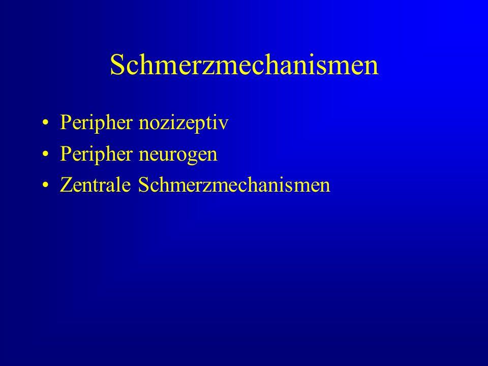 Schmerzmechanismen Peripher nozizeptiv Peripher neurogen Zentrale Schmerzmechanismen